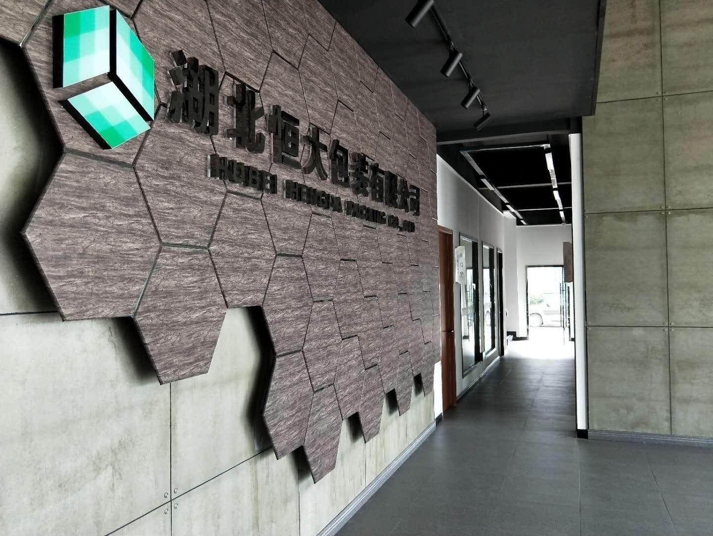 公司营销总监-林志祥-孝感日报专访